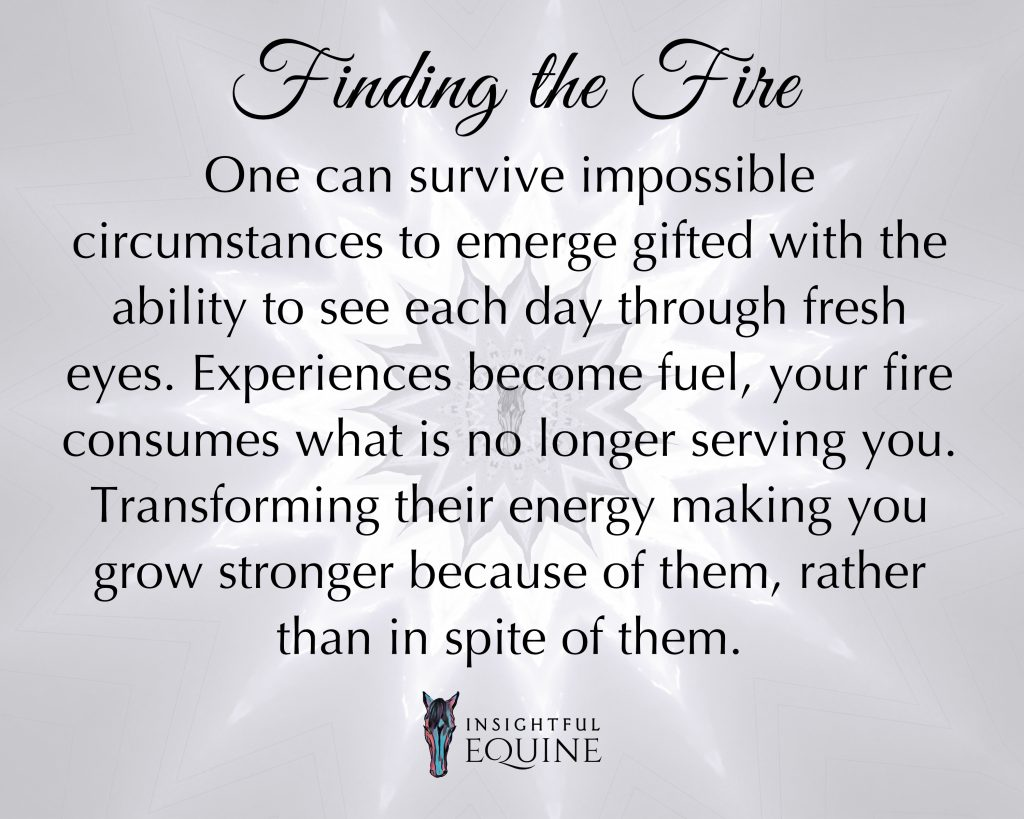 Horses inspire us to find our inner fire to use our experiences as fuel to grow stronger