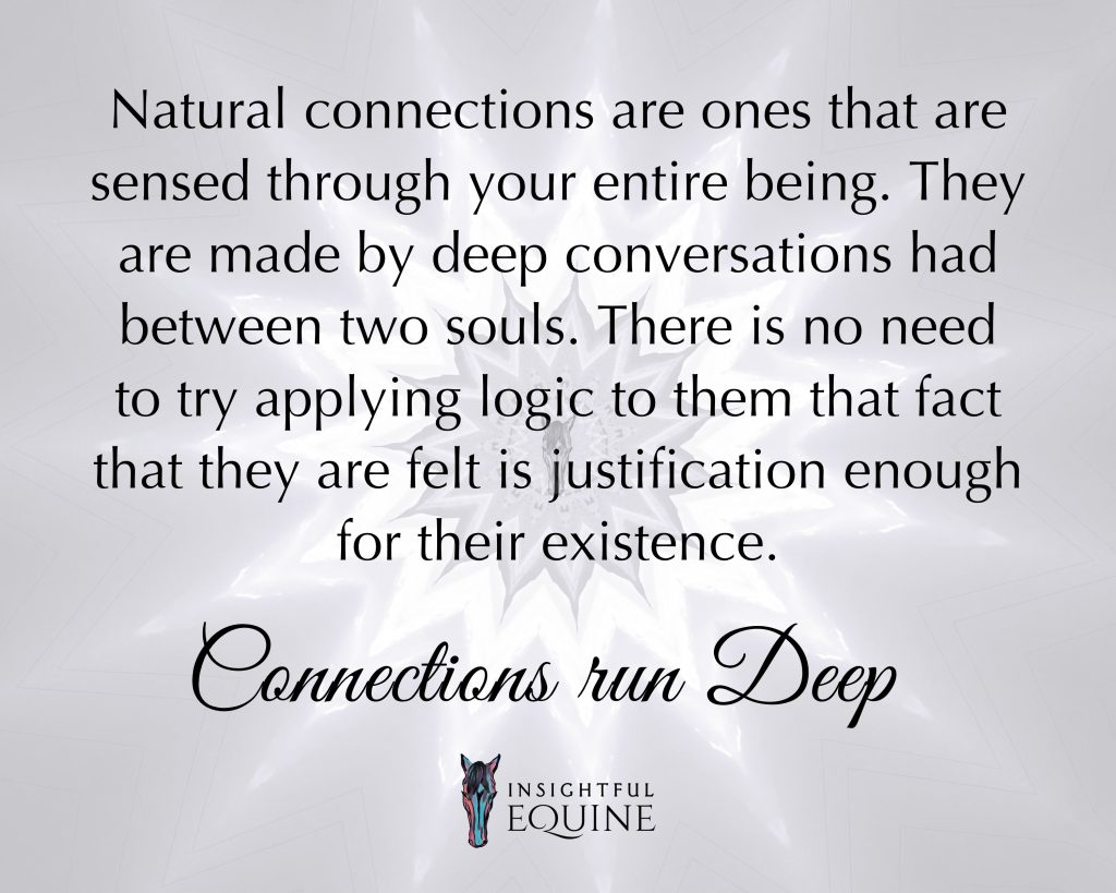 True connections need no explanation they are made by the soul