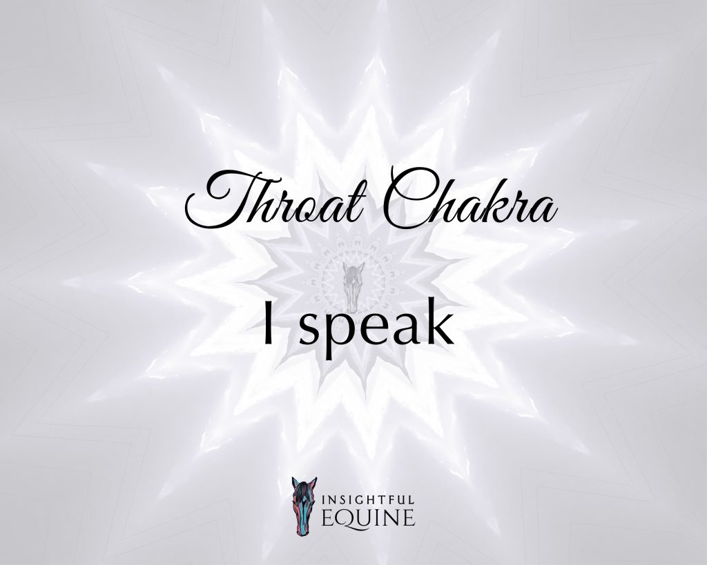 What horses teach us about the throat chakra and finding our voice