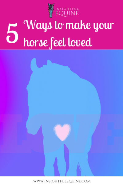 Insightful Equine is sharing five of our favorite ways of making horses feel loved and appreciated