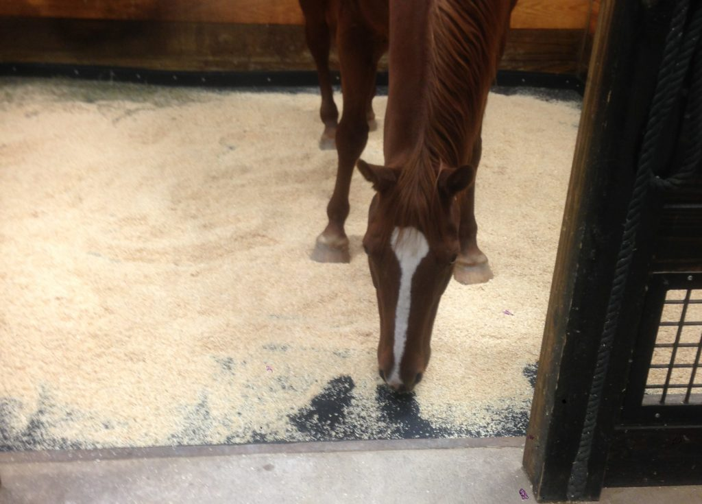 The Stall Cleaning Method That's Cheaper, Faster, And More Effective