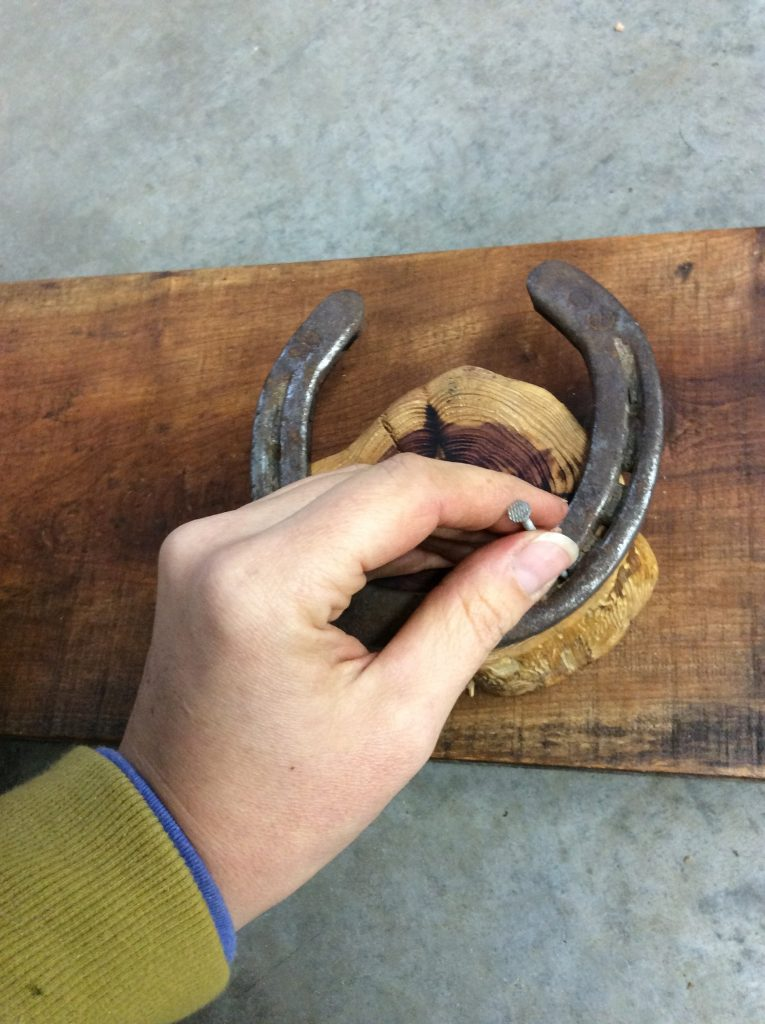 Full step-by-step plans to craft your own stunning horseshoe coat or bridle rack the easy way without welding, cutting, or bending any horseshoes.