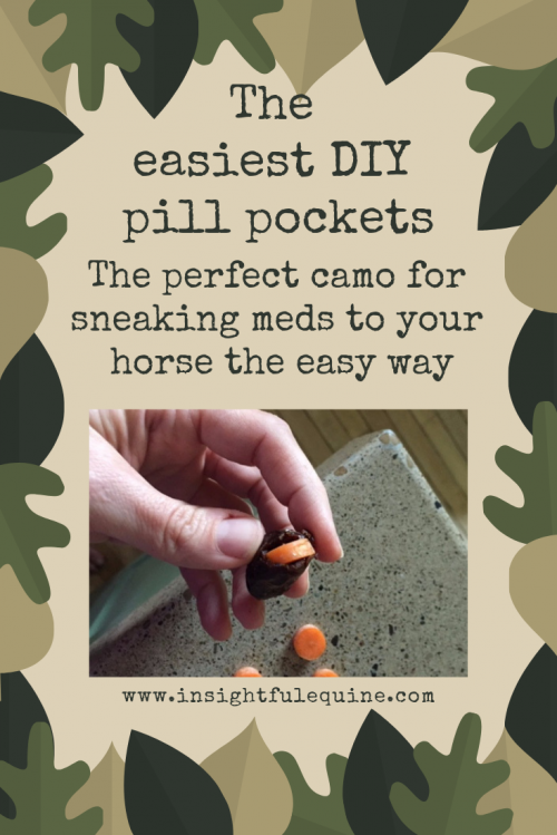 Trying to get a horse to take meds doesn't have to be a pain in the fanny. Check out this easy DIY pill camo idea on the blog at Insightful Equine.