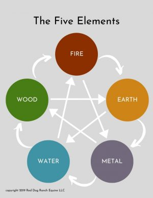 Explore the five elements of nature and how you can use them to support your horse - part 1 metal