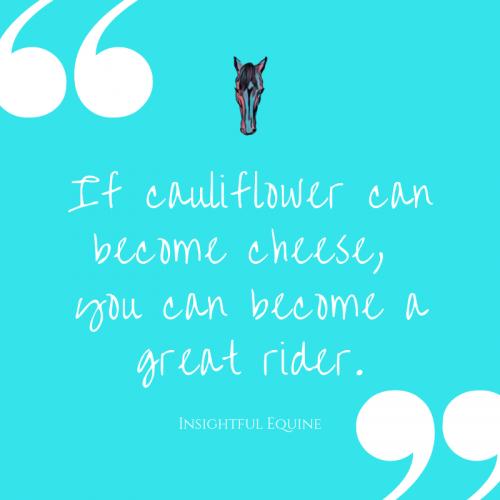 Insightful Equestrian Quotes