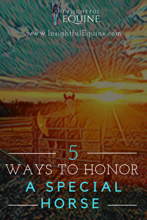Insightful Equine is sharing five unique ways to honor horses that have touched your life.