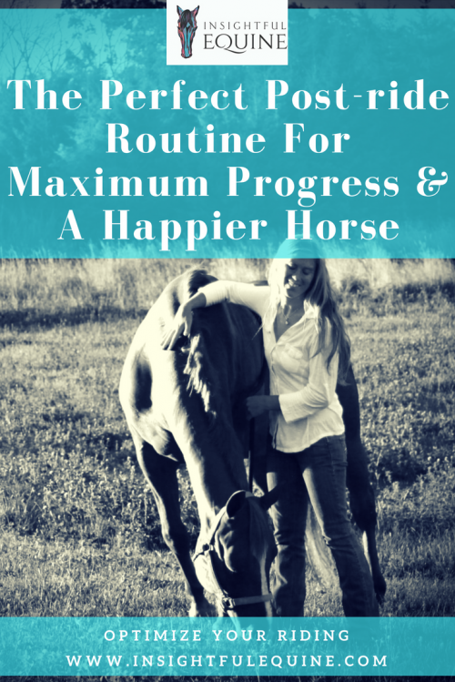 Establishing a post-ride routine can help you build a better relationship with your horse, spend less time worrying, and more time riding. Optimize your equine experience with these great tips. Horseback riding can be worry free and fun again for every equestrian with these pros tips from Insightful Equine.