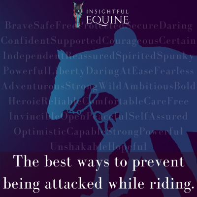 Want to feel safer riding down the trail and at the barn? Self-defense for riders is great but perhaps its time to take a new approach to preventing equestrians from being harassed or attacked. Some horsemen and women might find this approach to be offensive but we think its spot on and overdue.